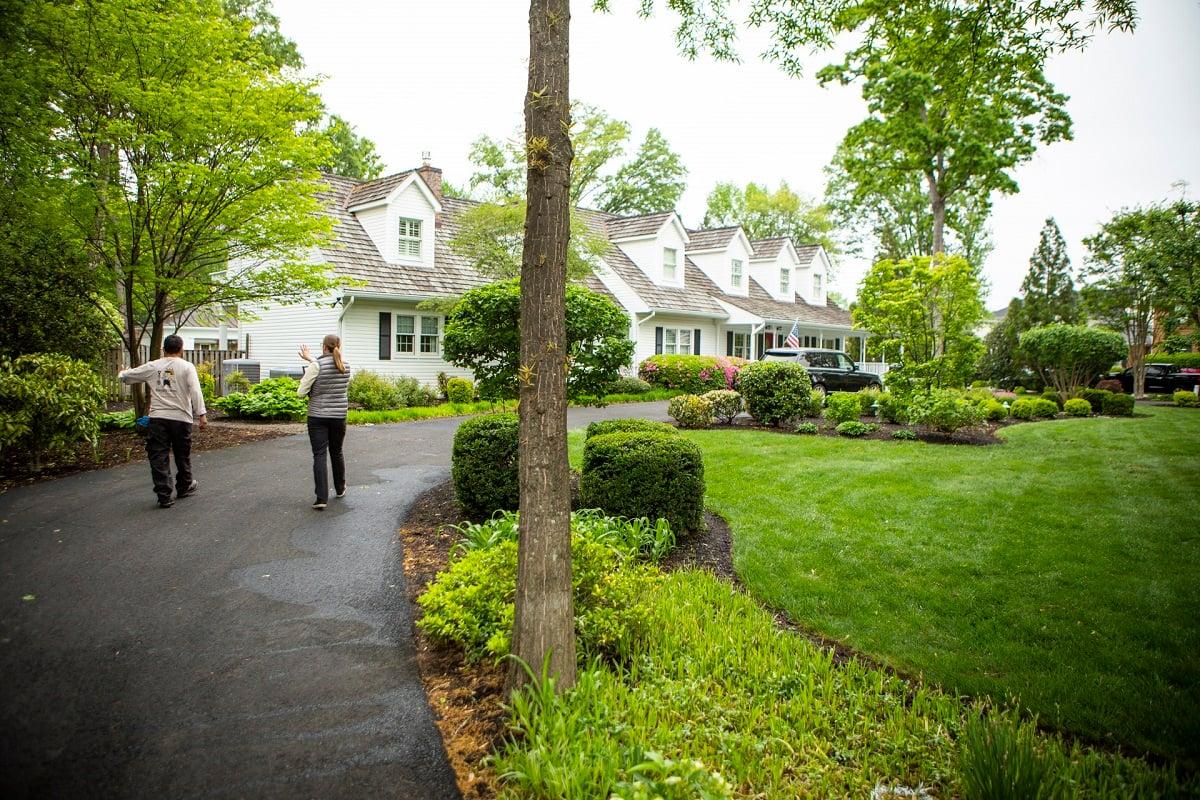 professional landscape designers planning landscape redo