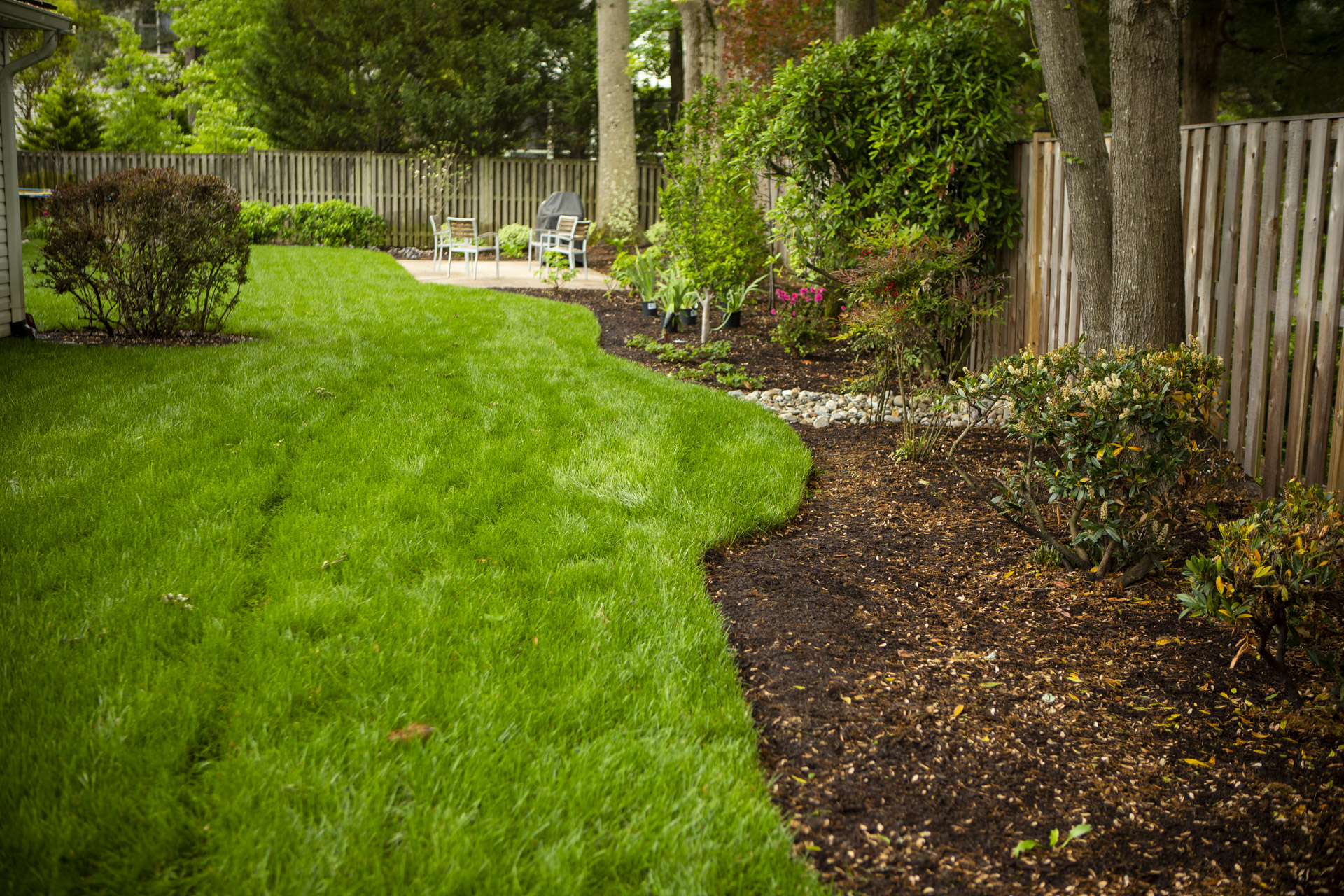 crisp edging between lawn and plant bed