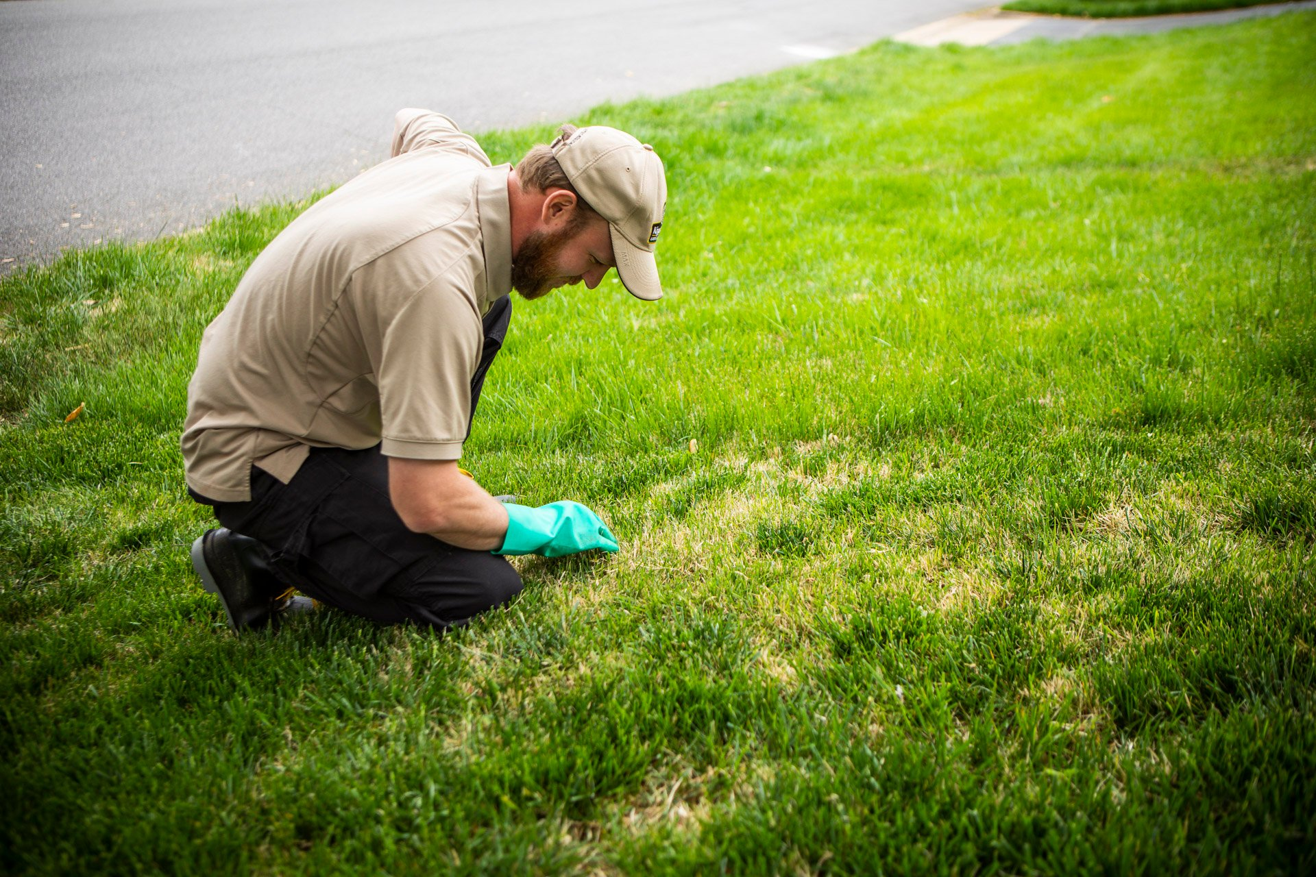 lawn care professional inspecting lawn in Virginia