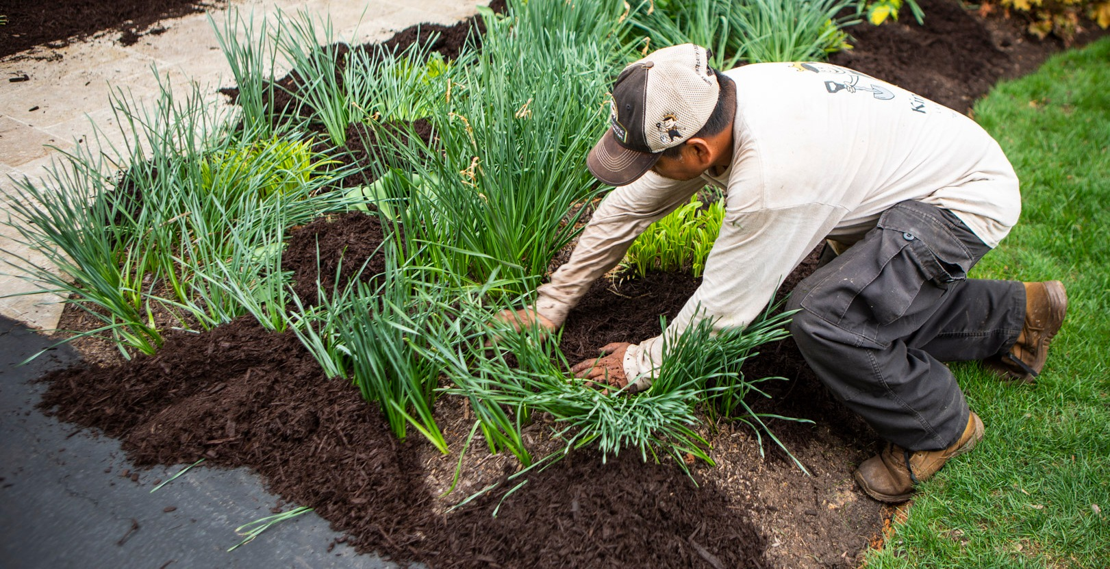 landscape professional planting new plants