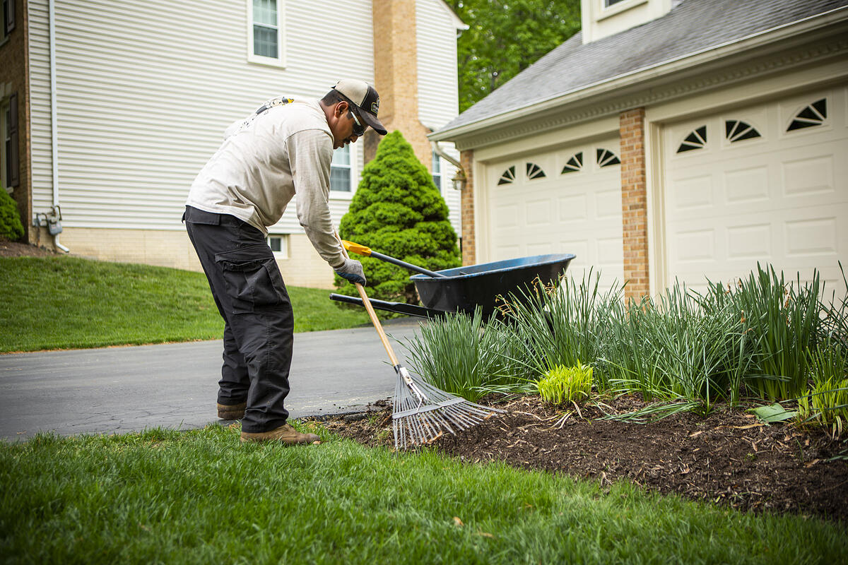 Lawn maintenance technician mulching lawn