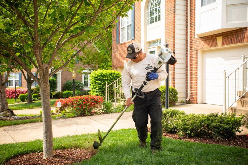 professional landscape technician edging