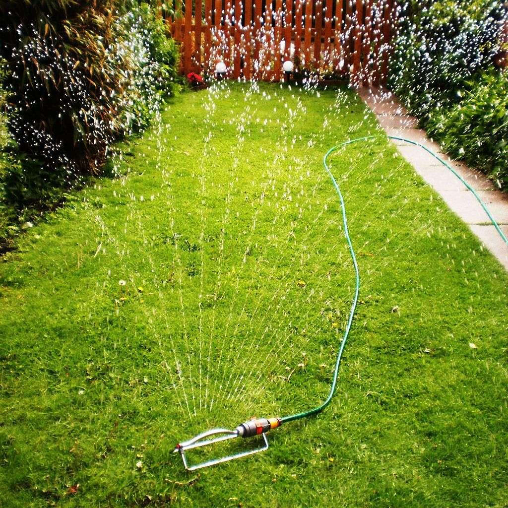 sprinkler overwatering lawn