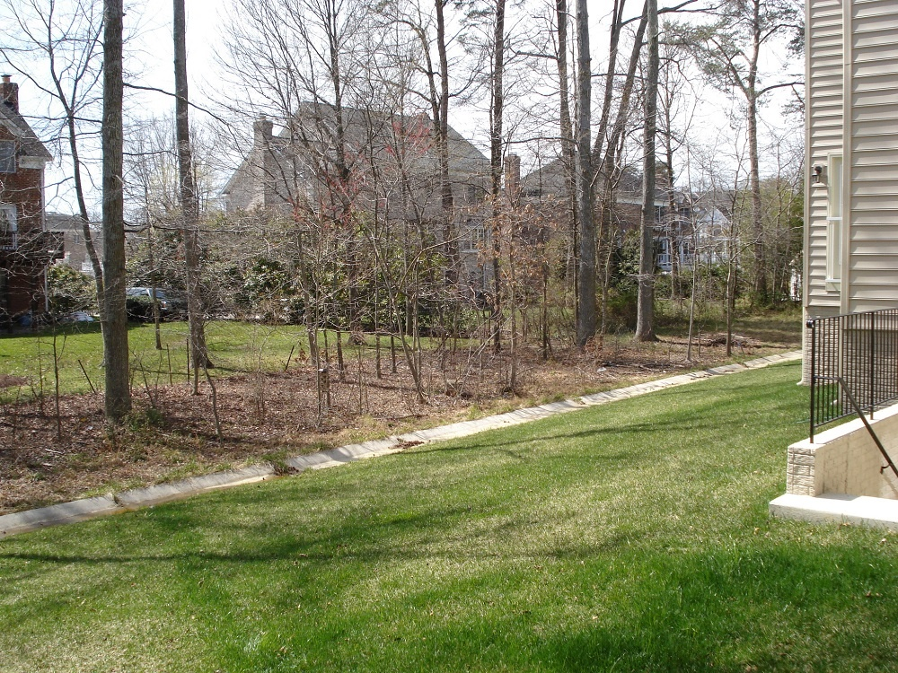 Kingstowne landscape project before