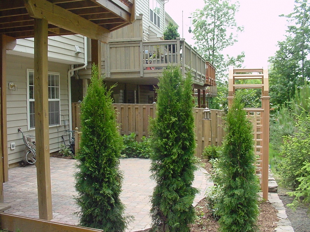 Townhouse patio with landscaping to create privacy