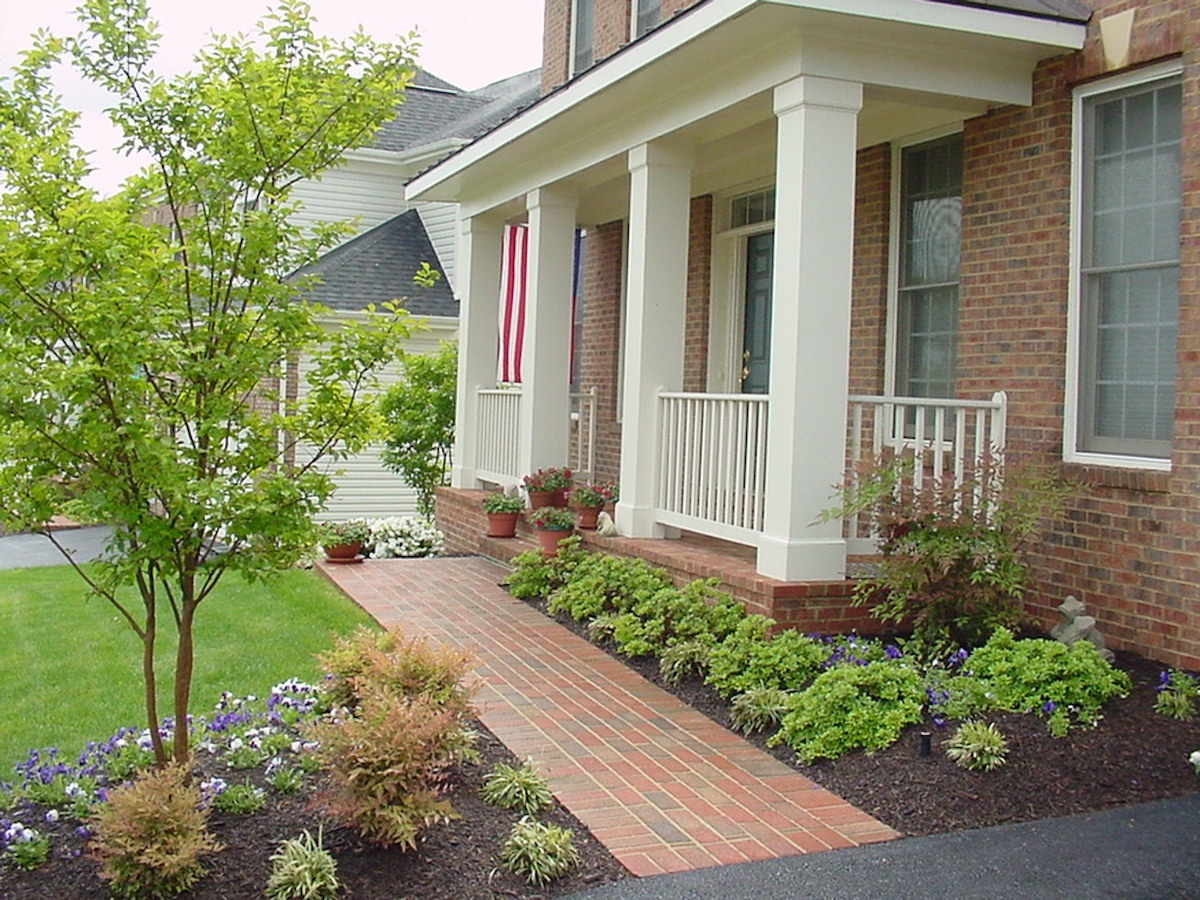 trees and shrubs that have been fertilized