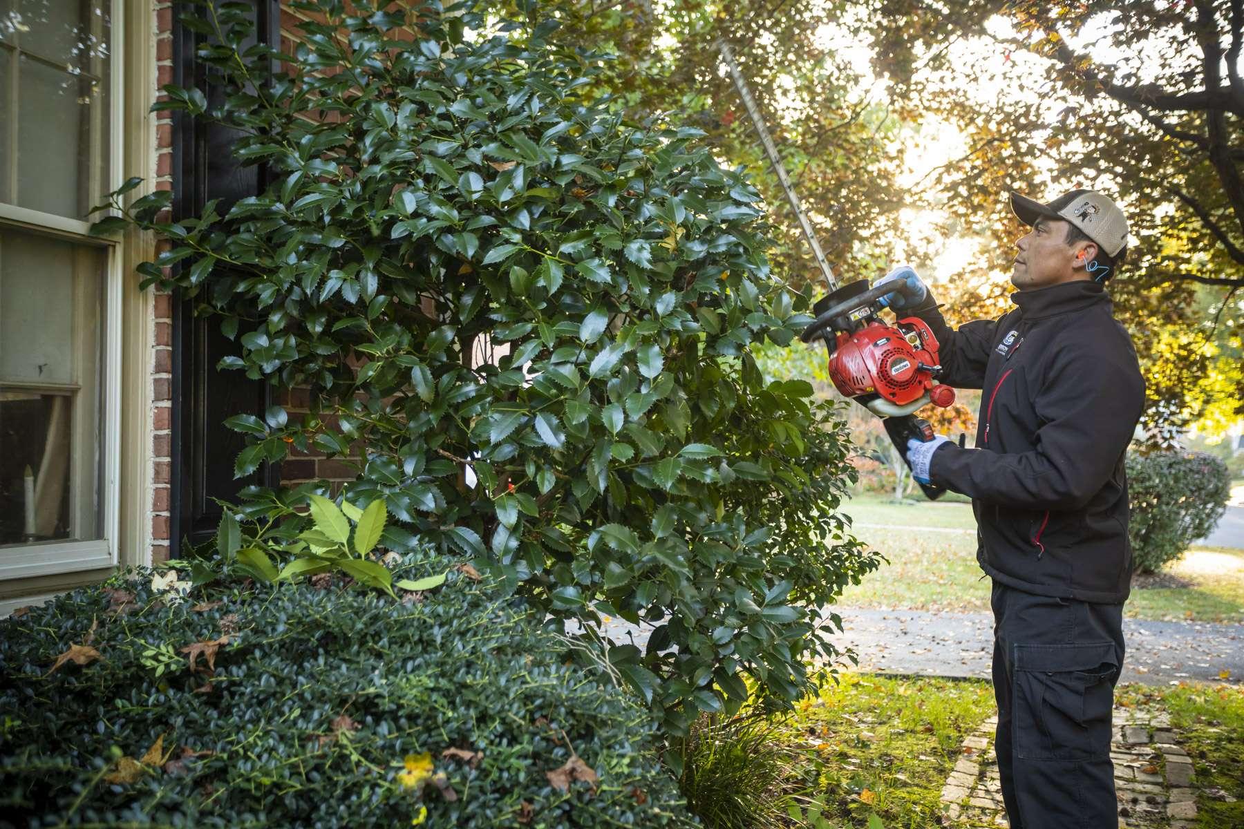 Kingstowne crew pruning shrubs