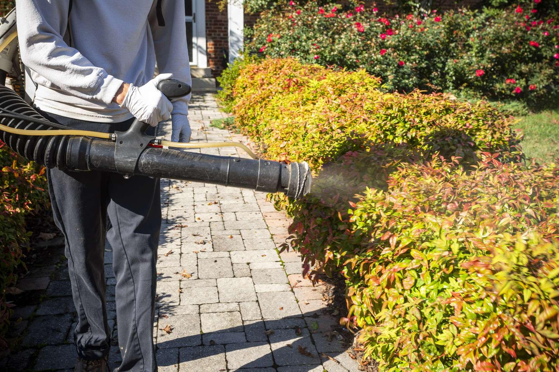 Pest control technician spraying for mosquitos