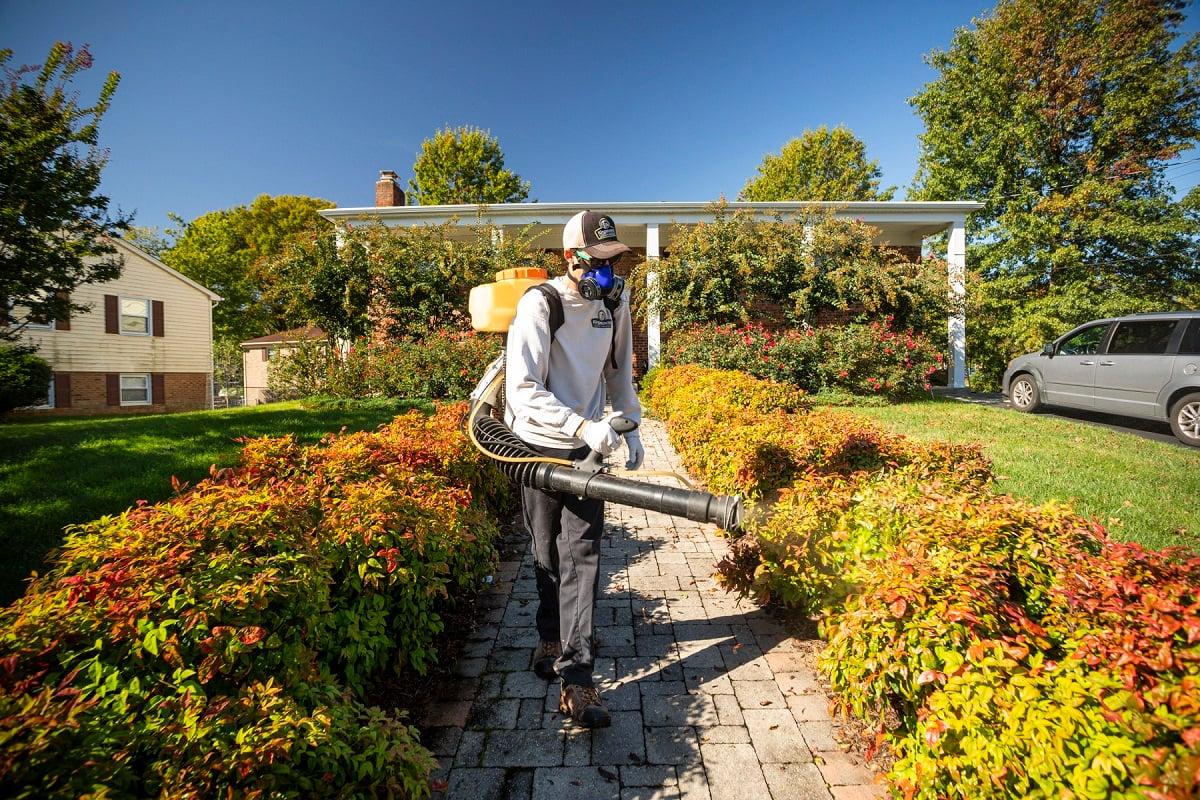 Lawn care technician spraying mosquito control