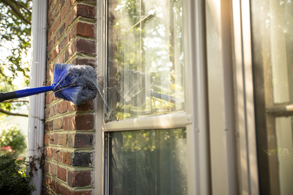 Pest control technician performing web wiping