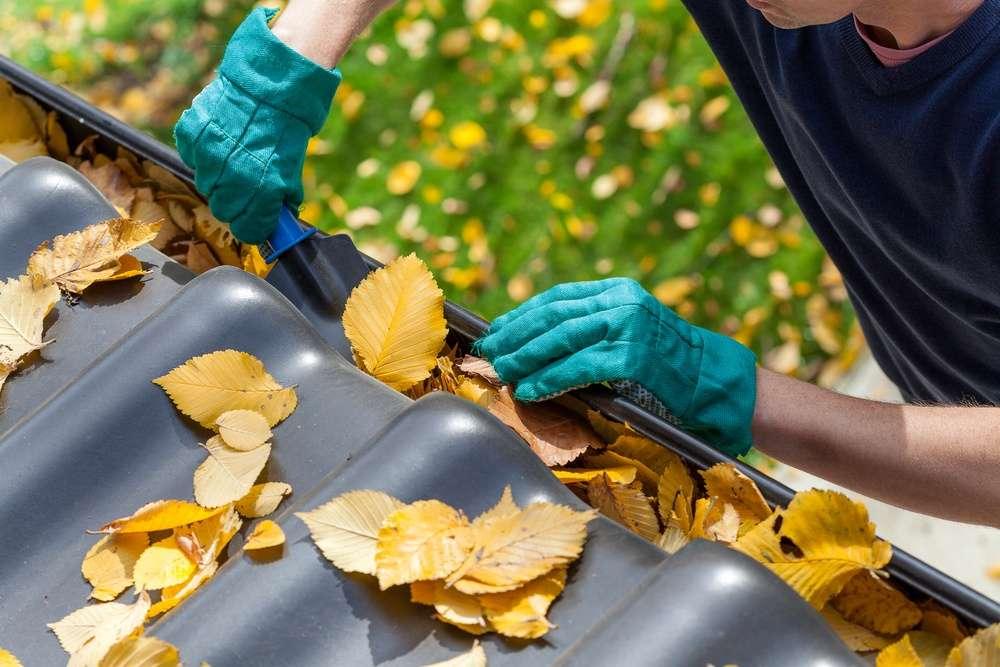Kingstowne employee cleaning gutters