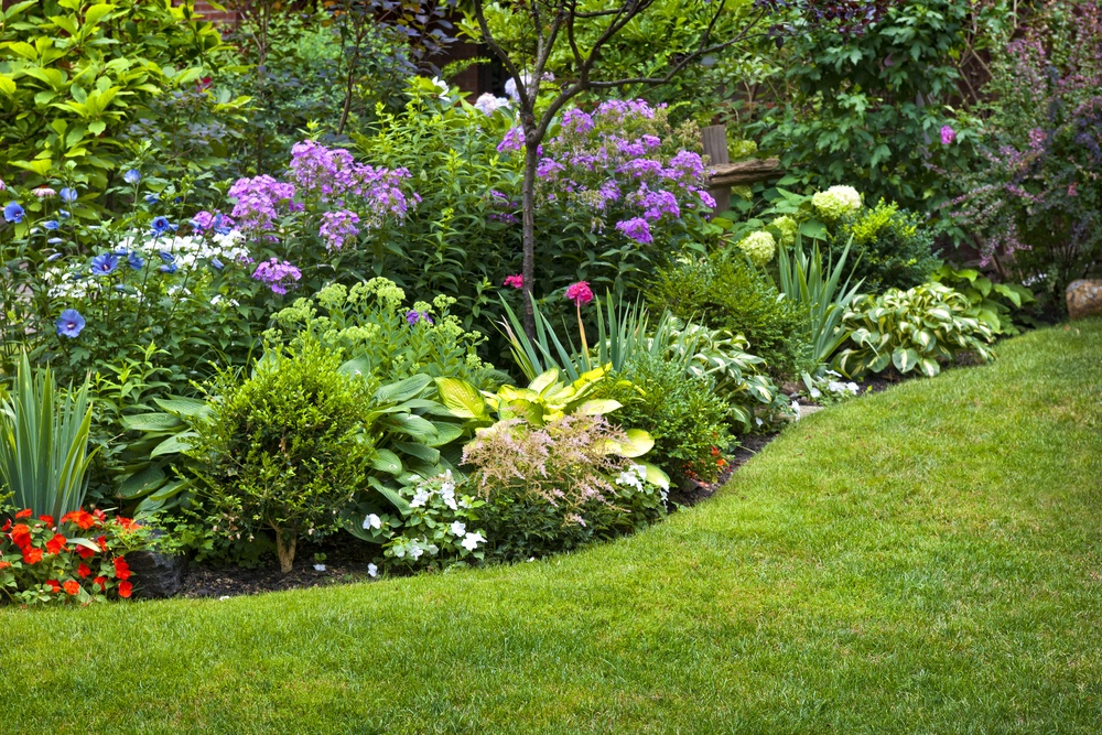 beautiful flowers, trees, and shrubs in lawn