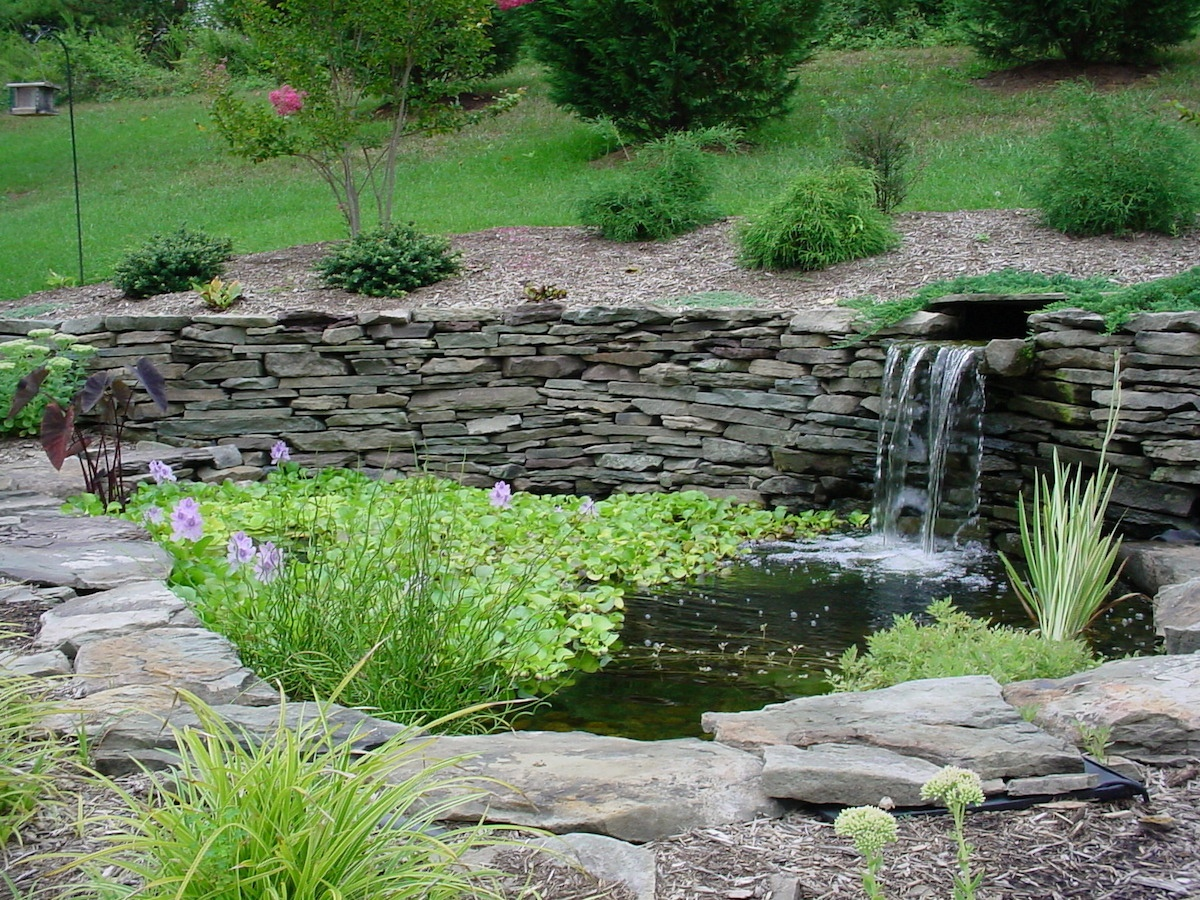 fish pond backyard water feature with waterfall