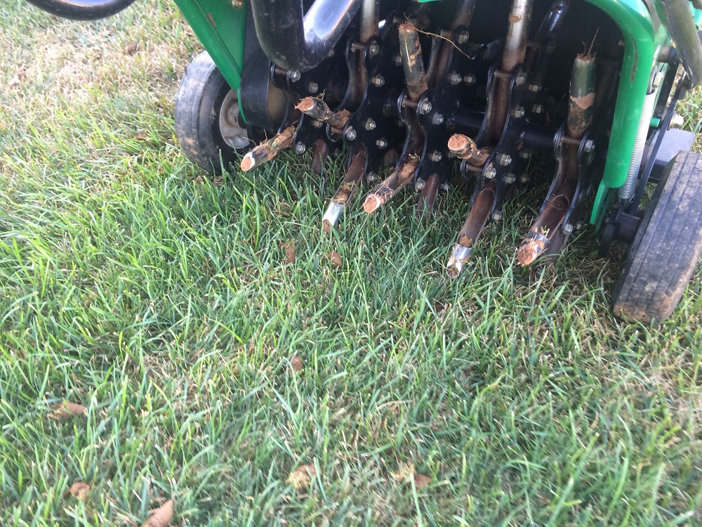 lawn aeration and cores of soil