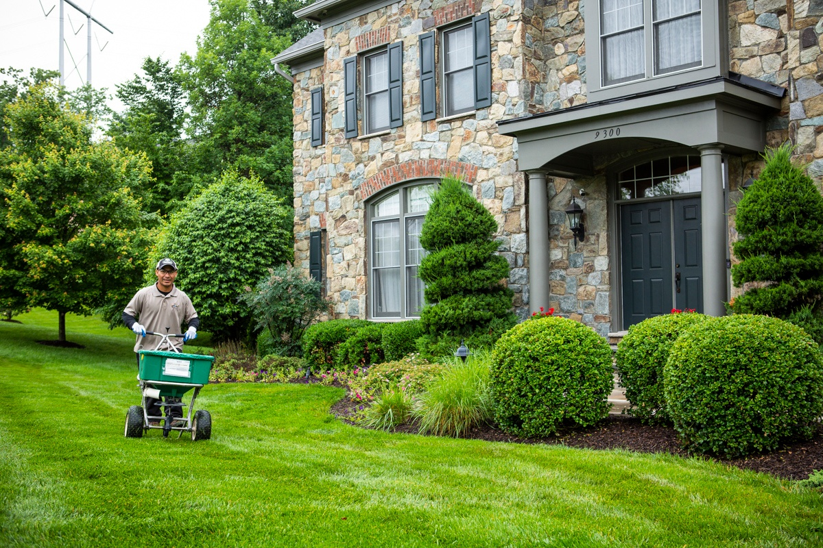 lawn fertilizer treatment