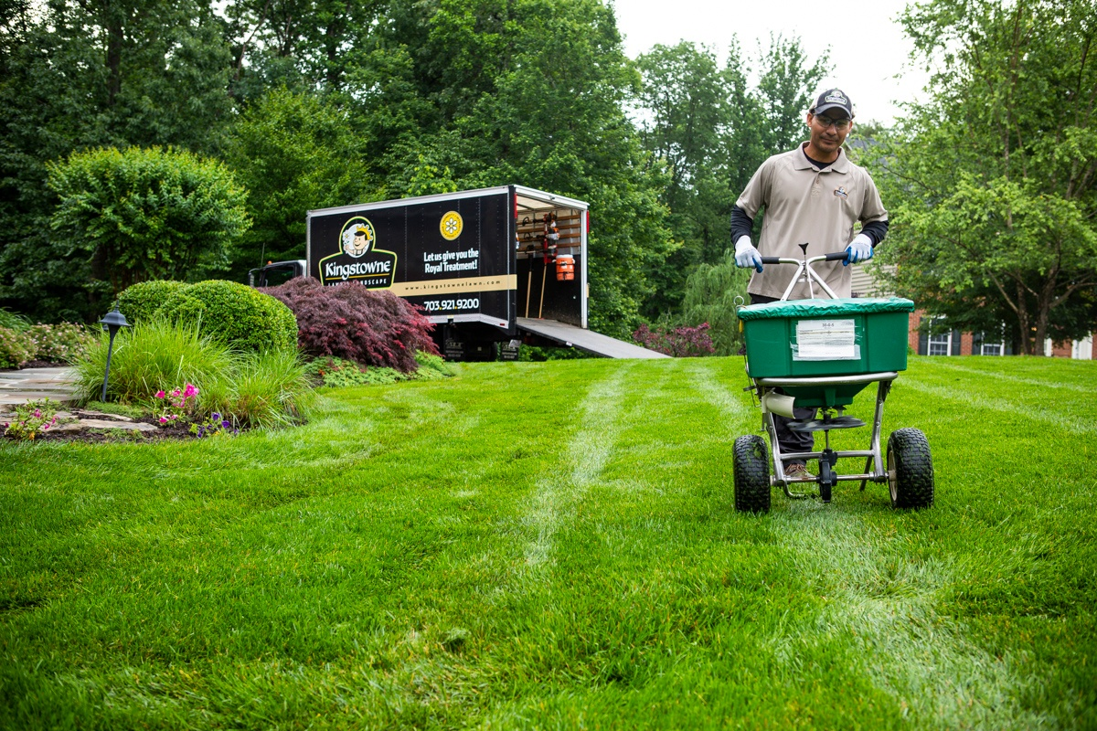 12 Tips For A Low Maintenance Lawn And Landscaping In