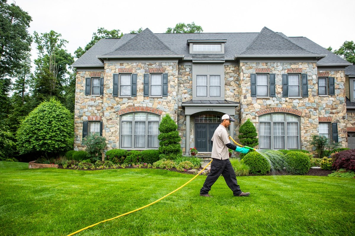 lawn technician spraying lawn care treatment
