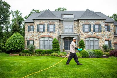 lawn care treatment on northern Virginia lawn