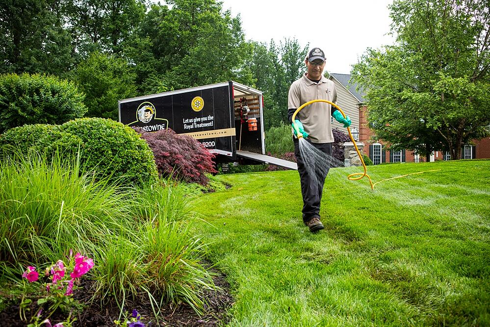 Kingstowne lawn care technician applying pre-emergent weed control