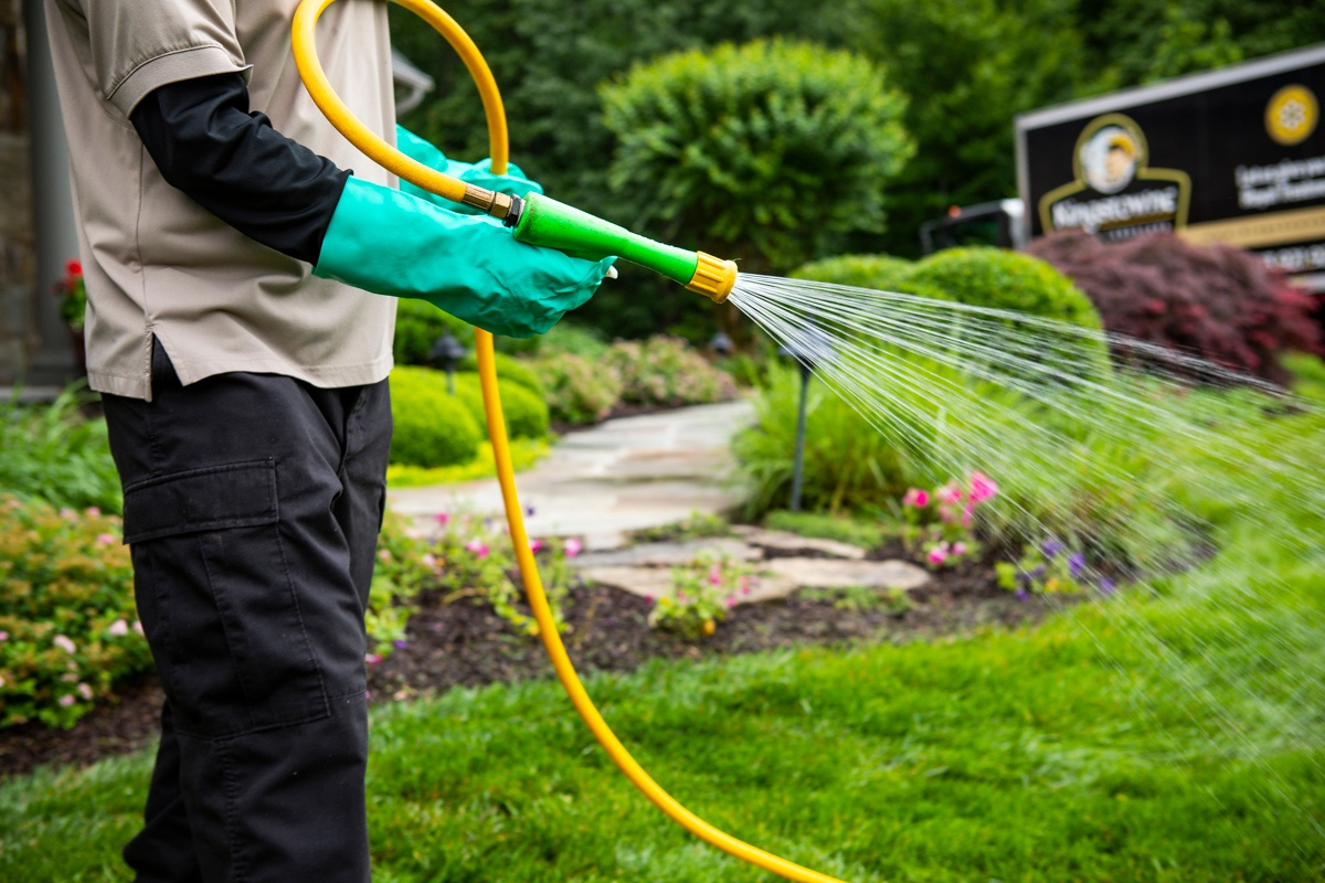 lawn care liquid spraying treatment Arlington, VA