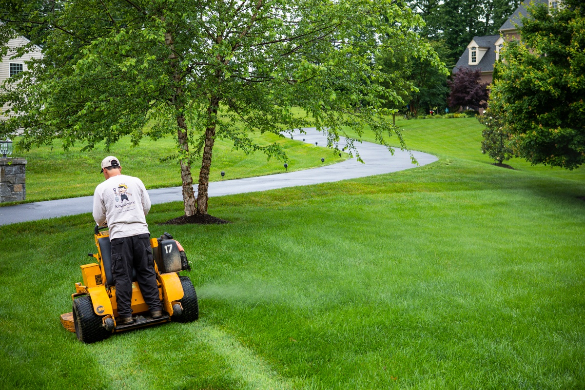 lawn mowing professional mowing nice lawn in Alexandria, Virginia
