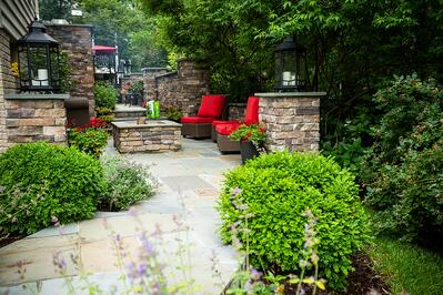 walkway and patio with low maintenance trees and shrubs