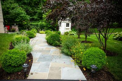 Walkway with low maintenance plants, trees, and shrubs