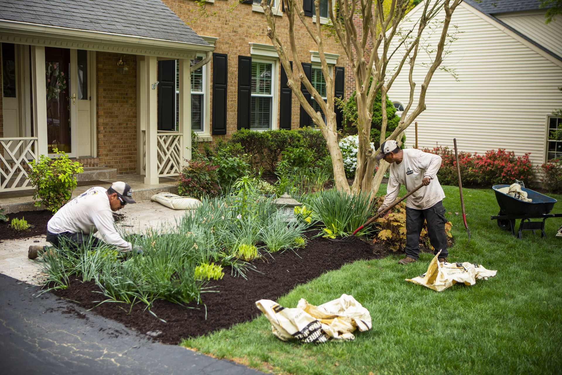 Is it Too Late to Mulch? Timing Tips for Alexandria, Arlington, and Springfield, VA