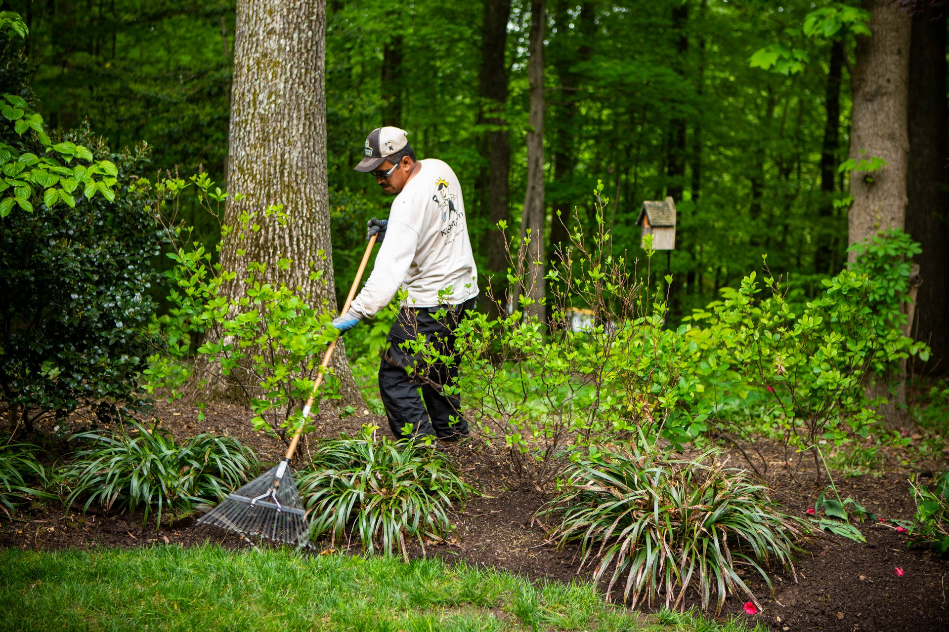5 Spring Landscaping Tips for a Tidy Property in Alexandria, Arlington, or Springfield, VA