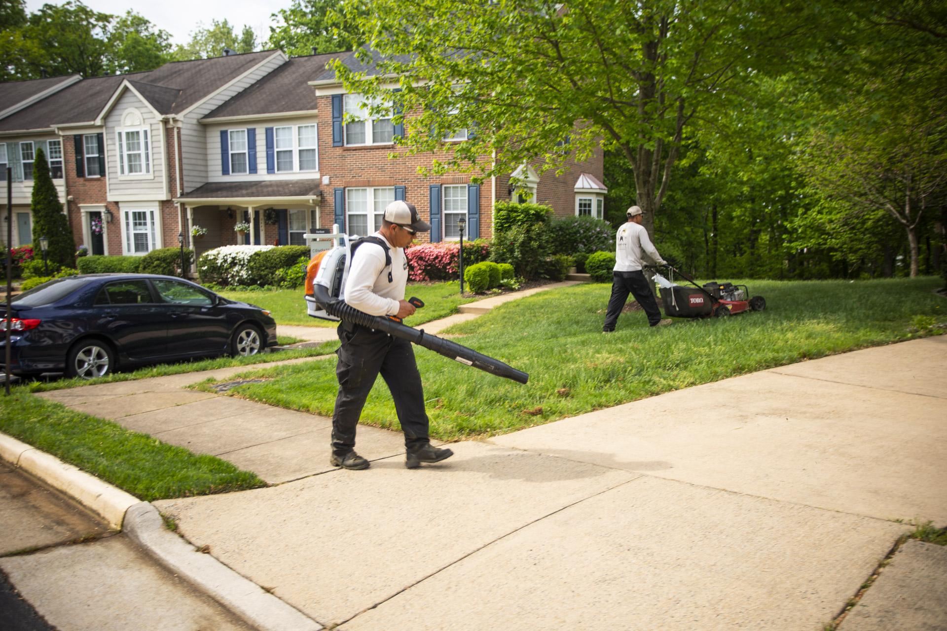 Your Complete Landscape Maintenance Checklist and Calendar for Alexandria, Arlington, & Springfield, VA