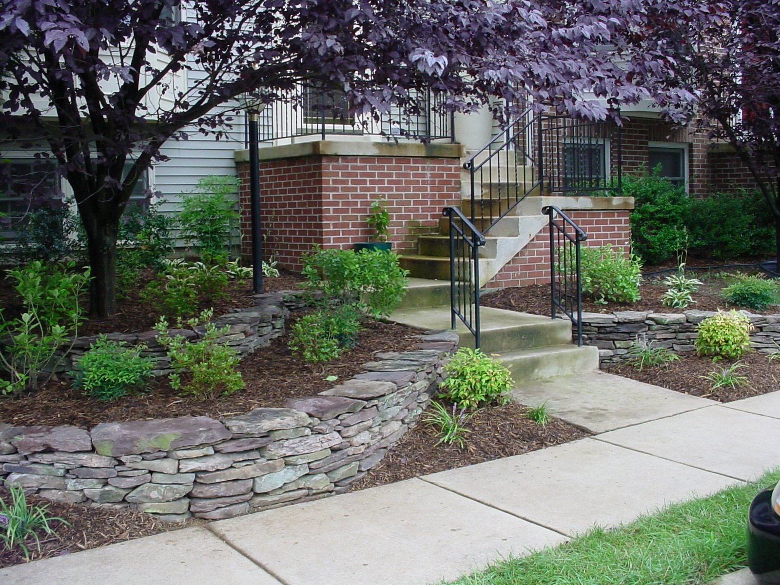 Creative townhouse landscape with trees, shrubs, and natural stone