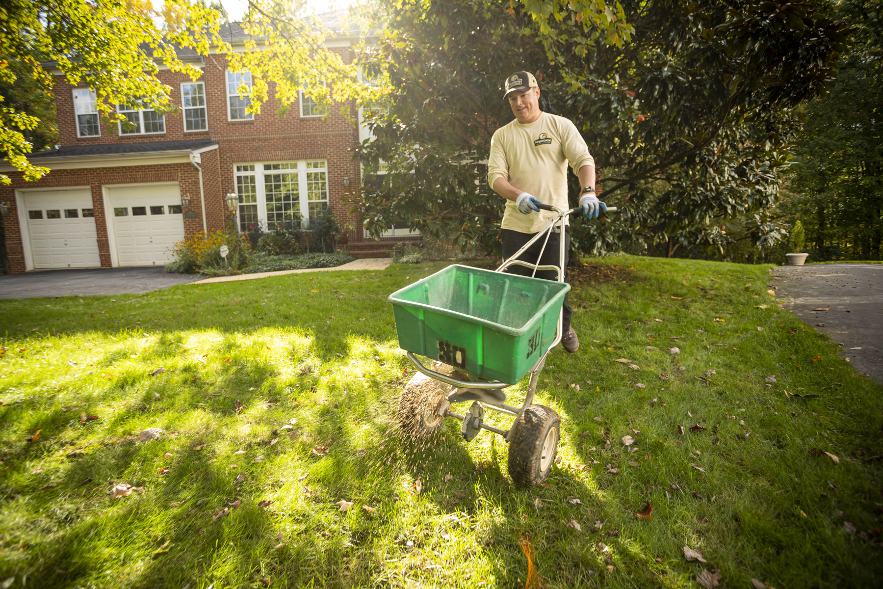 How to Hire One Provider vs. a Separate Lawn Service, Landscaper, Pest Control, and Plant Health Care Service